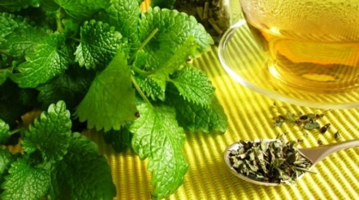 teák, amelyek zsírégetnek és fokozzák az anyagcserét)